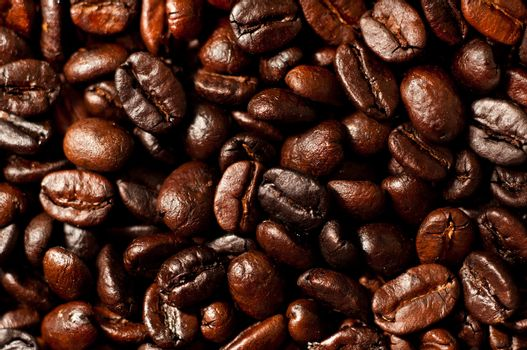 A closeup of home roasted Colombian coffee beans.