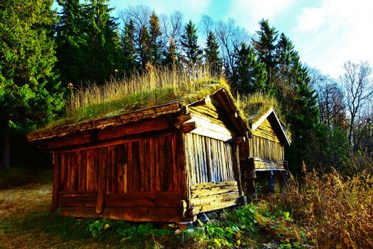 Old timber cabin