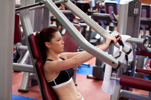 Attractive athletic woman using a bench press