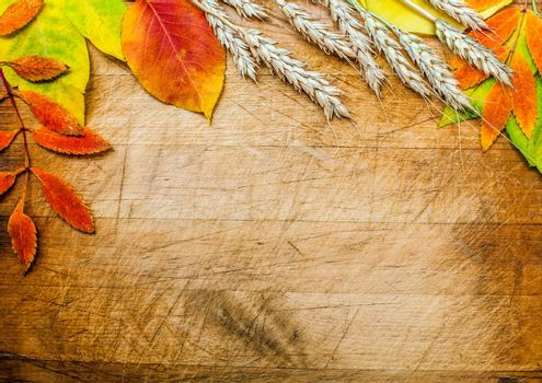 autumn leaves on a wooden surface