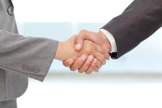 Handshake between two business people