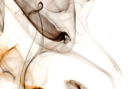 An abstract image of dark colored smoke set against a white background.