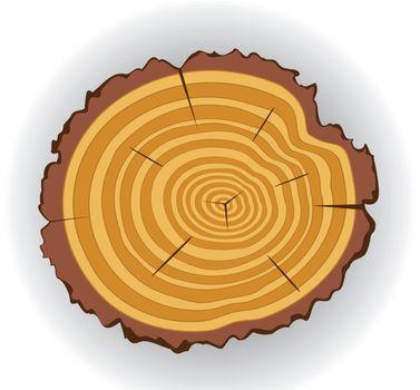 vector wooden cut