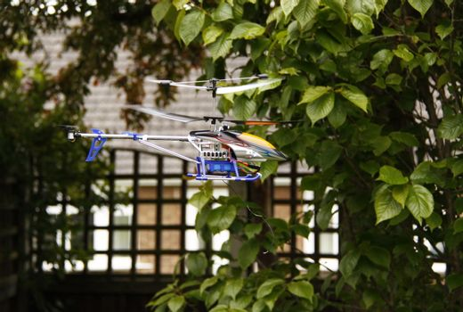 model helicopter flying around the garden