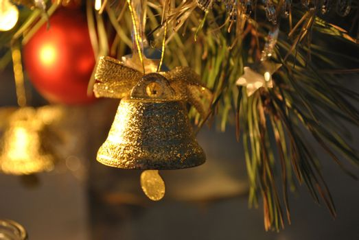Festive campanula, card