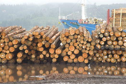 Logging Shipyard