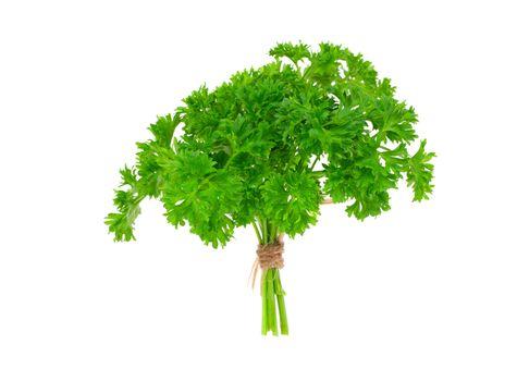 Fresh green parsley, isolated on white background