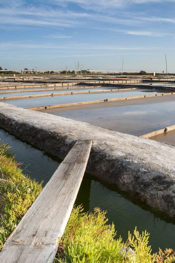 Salt industry in the city of Aveiro - Portugal