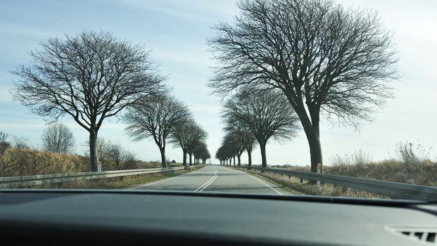 Scenic road in Denmark