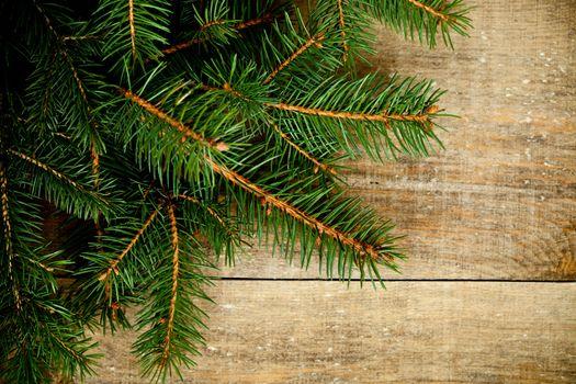fir tree on rustic wooden board