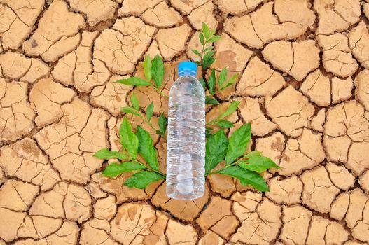drinking water bottle on arid background