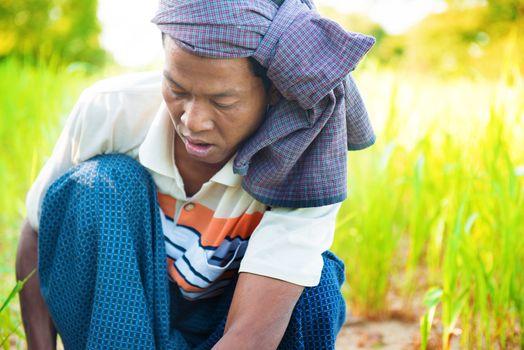 Myanmar male farmer