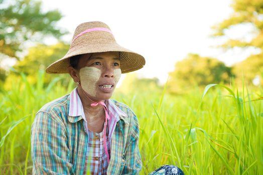 Mature Myanmar farmer