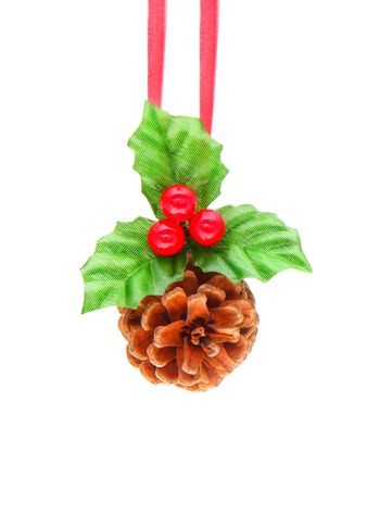Holly berry and pine cone
