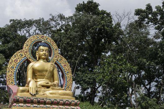 sitting golden buddha with trees in background. kathmandu, nepal, asia