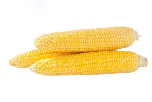 Fresh raw ears of corn isolated on a white background