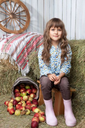Portrait of friendly little blond girl villager sitting on stool near inverted pail with apples in wooden hayloft during harvest time