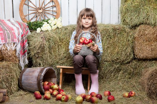 Portrait of friendly little blond girl villager sitting on stool with basket of apples in hands near inverted pail in wooden vintage hayloft during harvest time in autumn