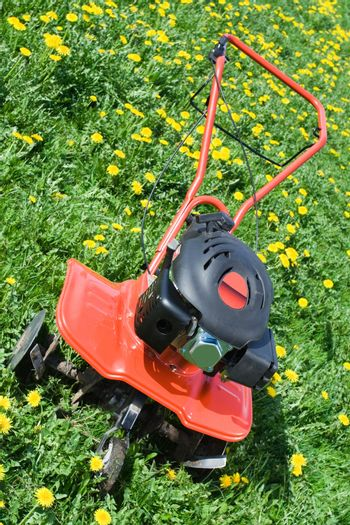 Hand tractor plough from front side on the flowering dandelion field Vertical