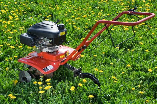 Hand tractor plough from back side on the flowering dandelion field Horizontal