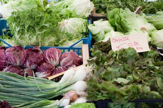 Variety of fresh vegetarian greens, lettuce, cabbage at open farmer's street vegetable market