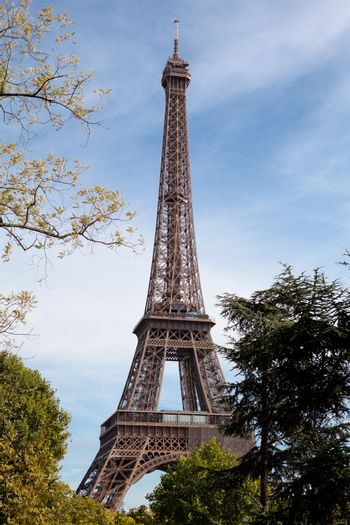 European national landmark Eiffel tower through leaves of park trees in spring in city Paris France on the blue sky background