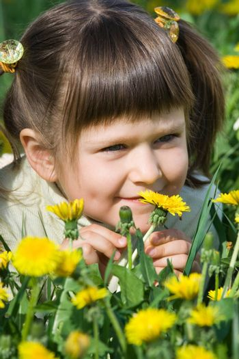 Little cool smiling girl is smelling at the dandelions on the flowering meadow
