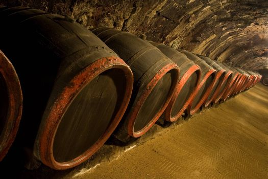 Row of Old wine barrels are stored in winery cellar near moss-grown wall