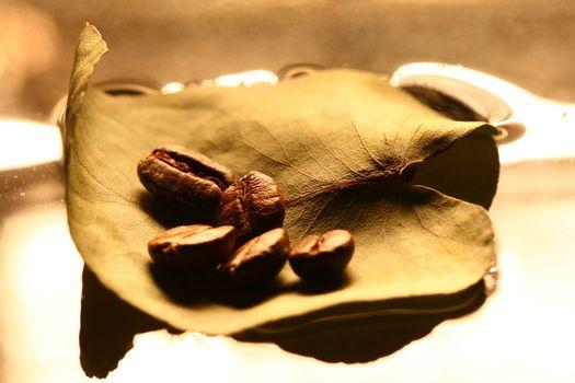 coffe flow