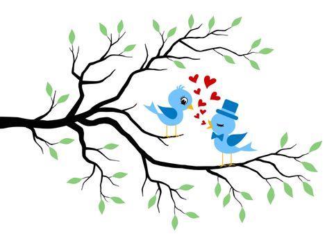 birds flirting on a branch