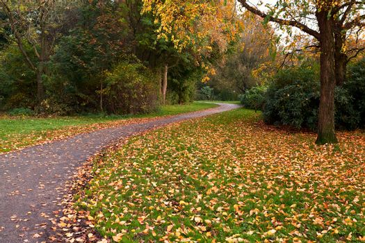 narrow path in autumn park