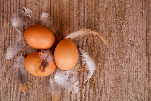 three eggs and feathers