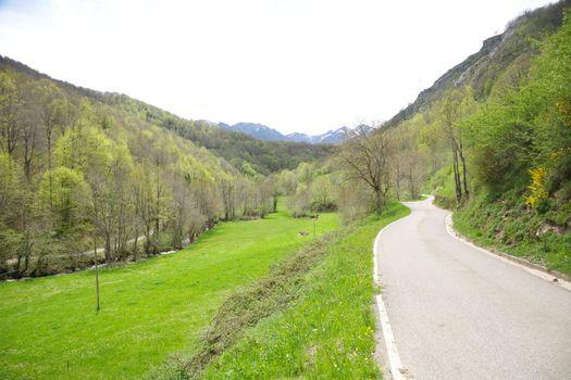 rural road in Picos de Europa