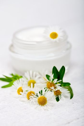 container with cream and chamomiles