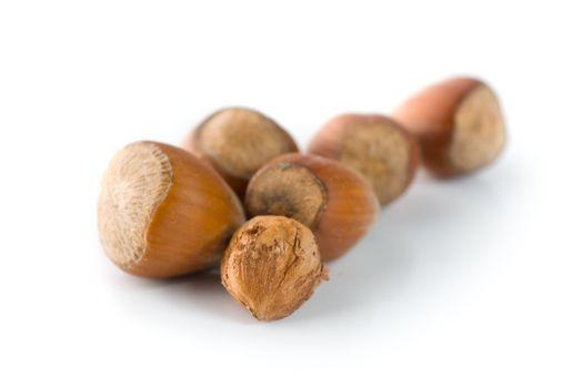 Hazelnuts on a white background
