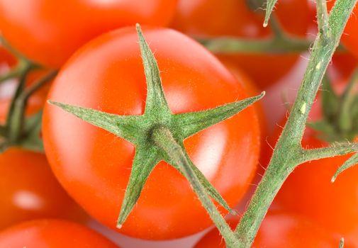 Bunch tomatoes