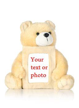 Teddy bear with photo frame