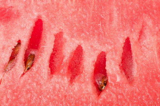 Watermelon backgrounds