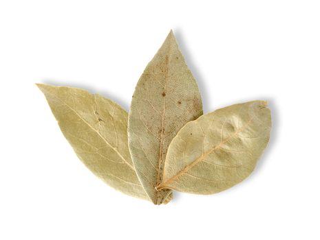 Three bay leaves