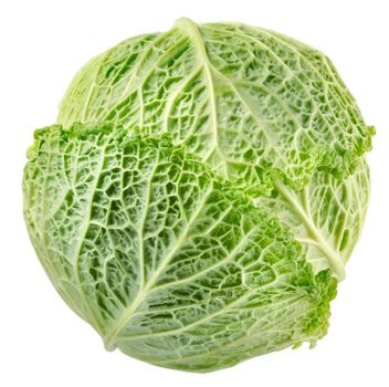 Cabbage top view