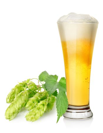 Light beer and hop