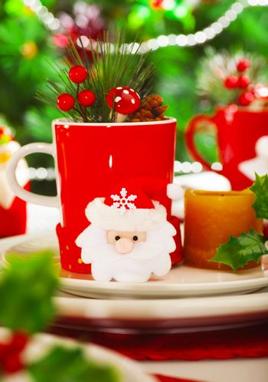 Christmastime decoration for dinner