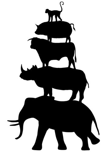 Silhouette of 5 animals stacked on top of each other