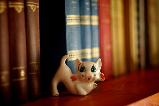 cute cat trinket in library books