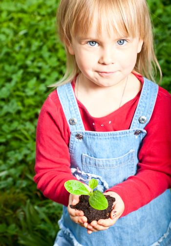 Child holding sprout