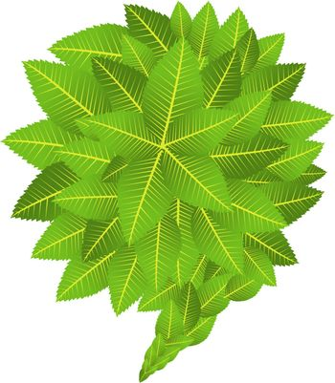 Go Green social marketing campaign