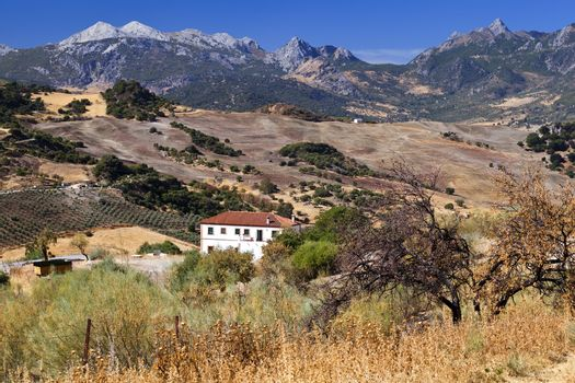 Spanish rural landscape with mountains