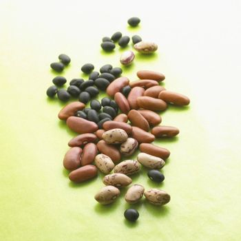 Variety of Dried Beans