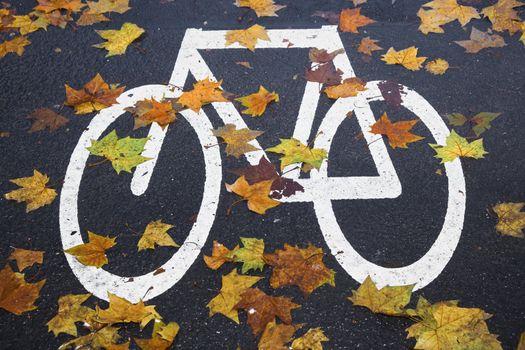 white mark bicycle lane at the street