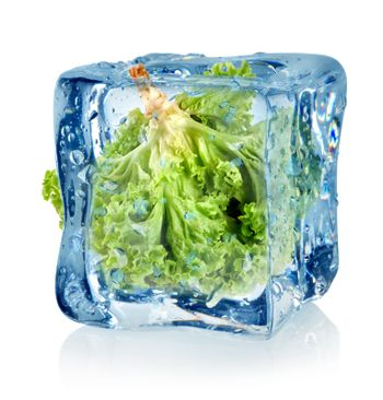 Ice cube and lettuce